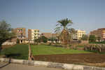 Small plots of farm land in residential Luxor.