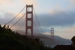Highlight for Album: San Francisco and San Simeon, 2013