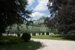 Palm Garden at Schönbrunn